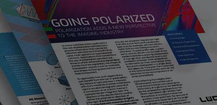 Polarization White Paper